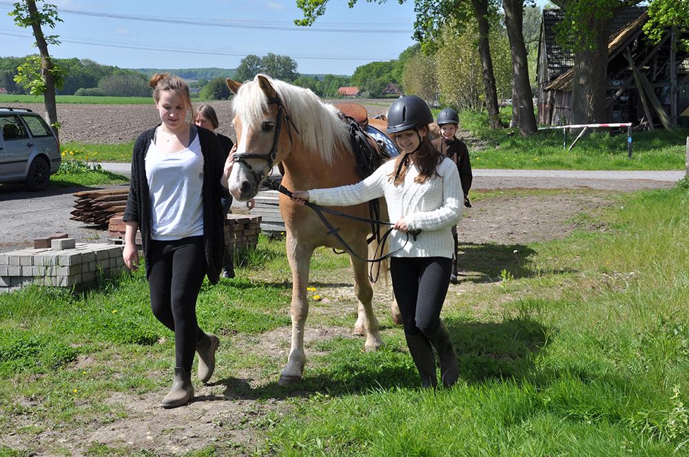 Hof Mormann - Pferde - Ponys - Ausritt - Reitstunden