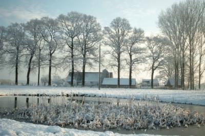 Ponyhof Mormann Bauernhof Havixbeck Münsterland NRW