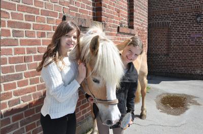 Ponyferien Mormann - Mädchen - Ponys